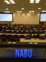 UN CEPA Meeting